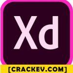 Adobe xd crack + offline installer full version download