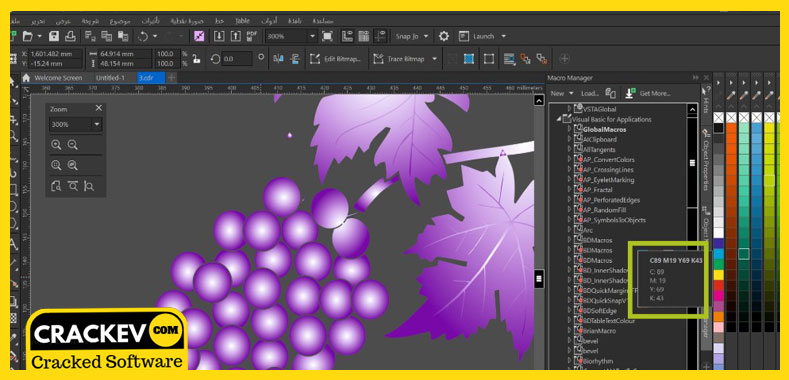 coreldraw x8 portable