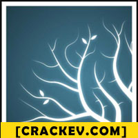 Cracked software pro crack only
